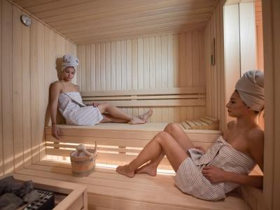 Koja je cena izrade sauna
